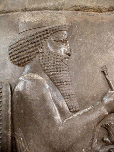 Darius the Great of Persia, relief image
