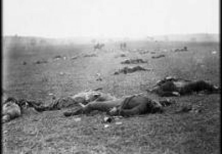 black and white photo of the battleground, with dead soldiers lying on the field
