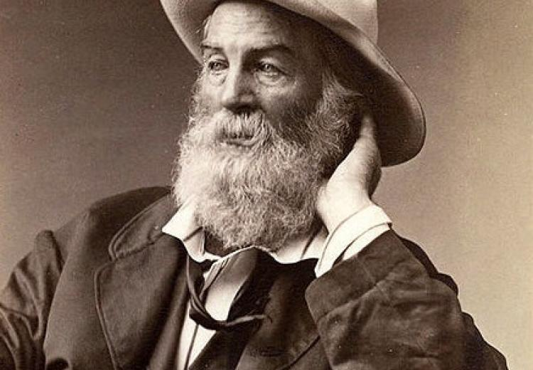 Photo of Walt Whitman taken in Brooklyn, New York in September 1872.