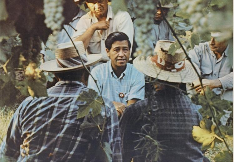 Photo of Cesar Chavez with farm workers in California, ca. 1970.