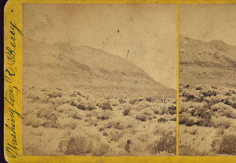 Stereograph showing sagebrush-covered desert landscape with mountain in background.